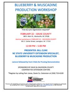 Nc blueberry festival essay scholarship