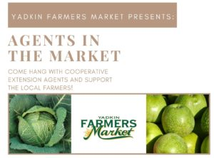 Cover photo for Agents in the Market