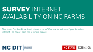 teal and white graphic announcing the NC DIT survey