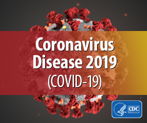 Cover photo for COVID-19 Online Resources