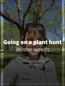 Cover photo for Going on a Plant Hunt - Weeds