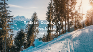 Cover photo for Yadkin County 4-H Newsletter-January 2021 Edition