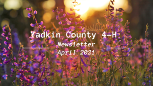 Cover photo for Yadkin County 4-H Newsletter - April Edition