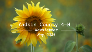 Cover photo for Yadkin County 4-H May Newsletter