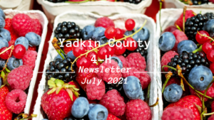 Cover photo for Yadkin County 4-H July Newsletter Is In!